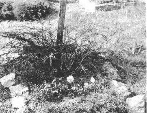 Reputed Grave of Oskar Dirlewanger