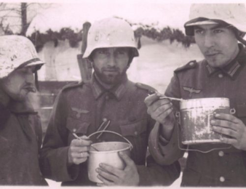 German 6th Army, 94th Infantry Division Veterans at Stalingrad